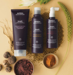 (Salon INSOLITE BEAUTE in Tokyo) recommended products 2 - AVEDA