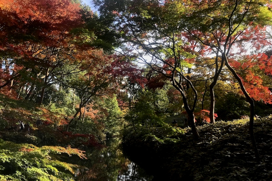 Rikugien Garden Tokyo, Japan