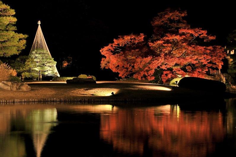 Illumination, Japanese Garden